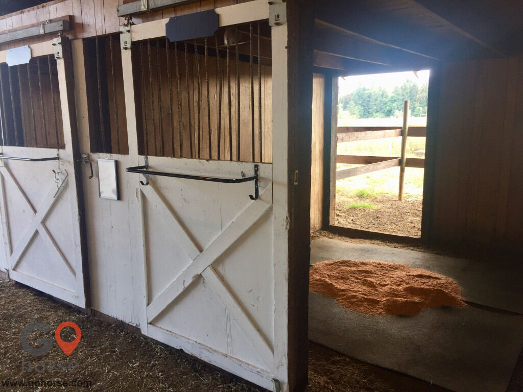 Willow Pond Farm Horse stables in Junction City OR 5