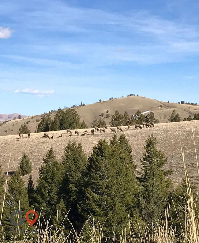 crooked creek guest ranch Horse stables in Dubois WY 7