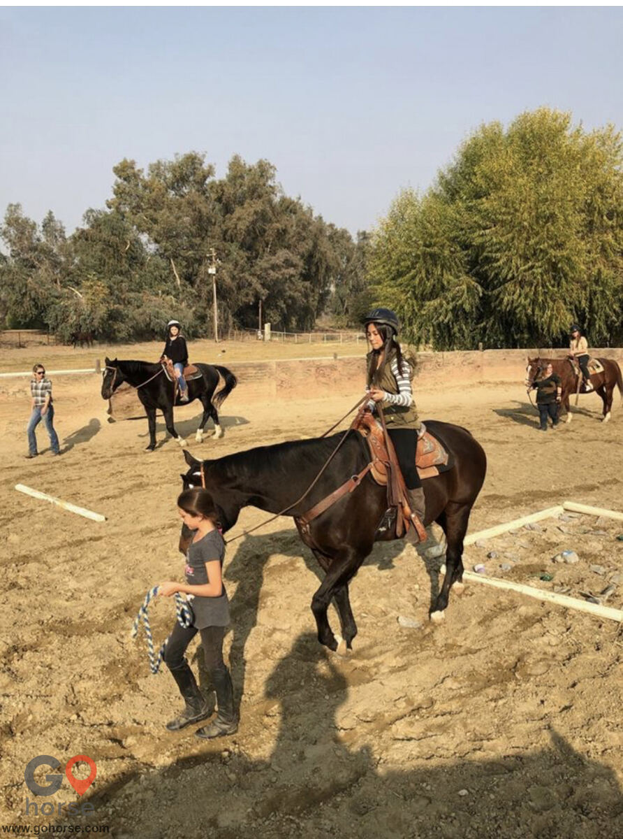 Circle T Ranch Horse stables in Lemoore CA 21