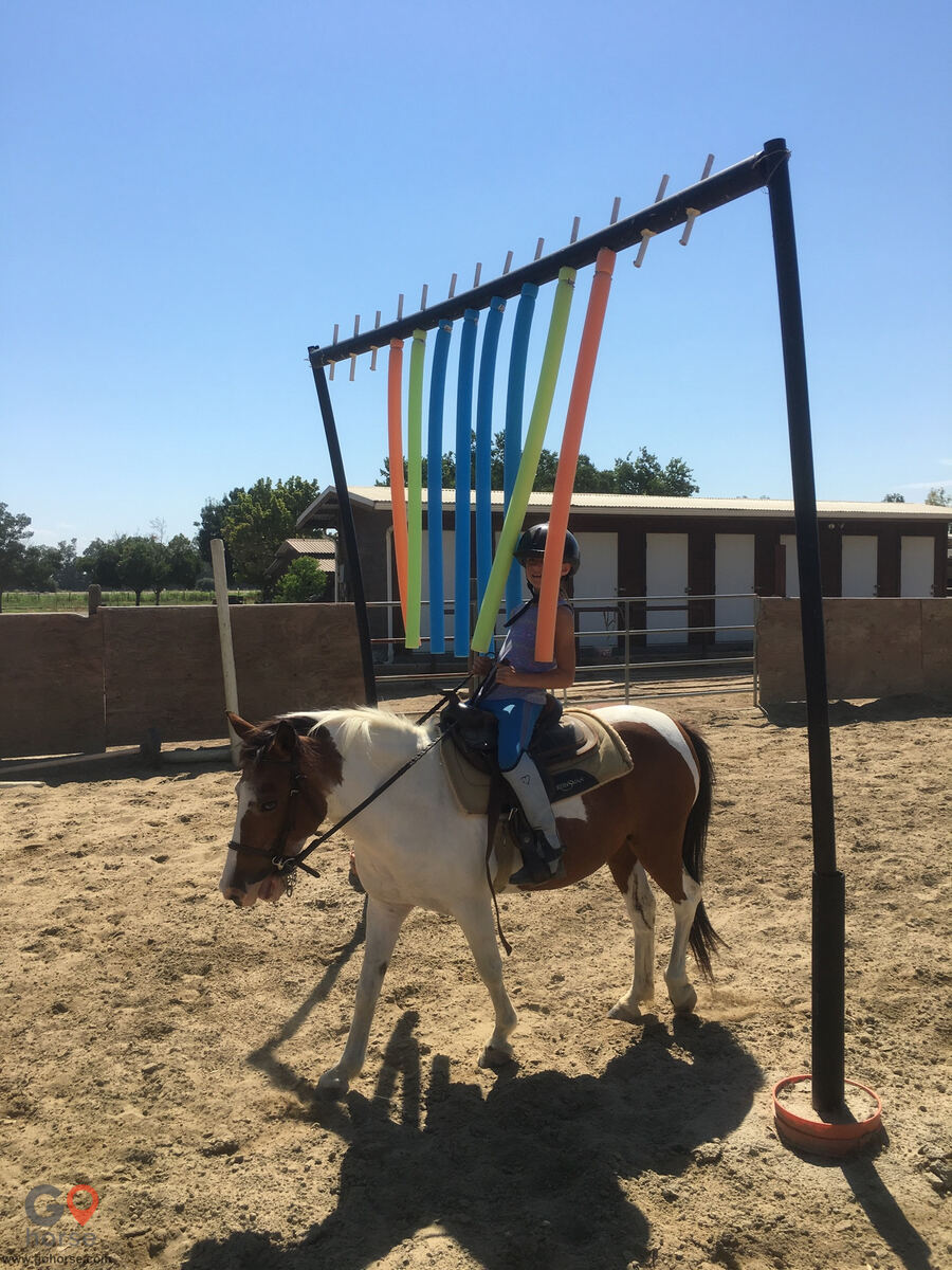 Circle T Ranch Horse stables in Lemoore CA 28