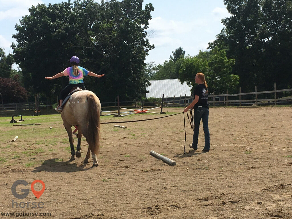Grandview Farms Equestrian Center Horse stables in Harwinton CT 5