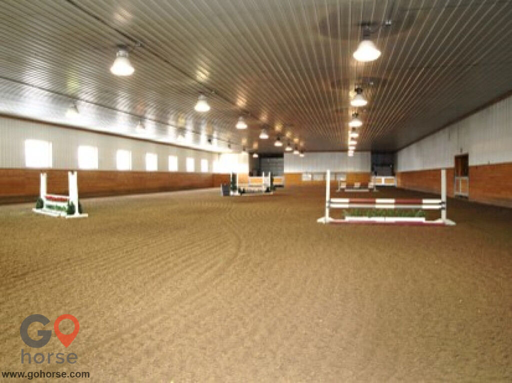 Tolland Falls Ventures Horse stables in Sedalia CO 6