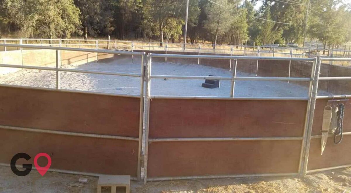 Standridge Horse Training Horse stables in Mountain Ranch CA 8