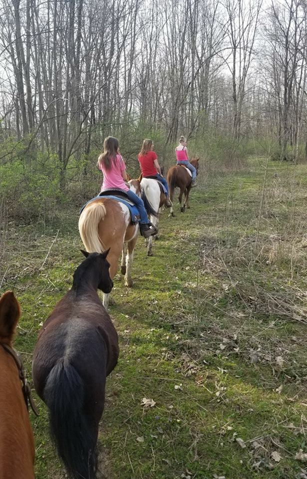 4M Ranch Horse stables in Valparaiso IN 4