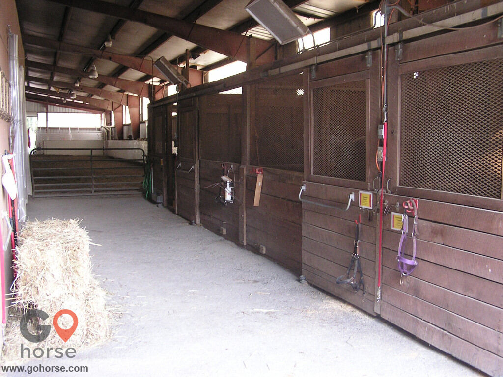 Spring Fever Farm Horse stables in Mt Airy MD 2