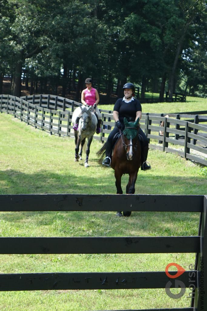 Tuff Competition Farms Horse stables in Canton GA 3
