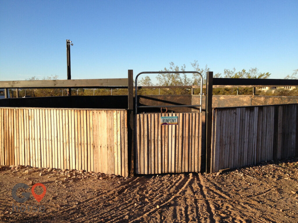 Runpony Ranch LLC Horse stables in Wittmann AZ 5