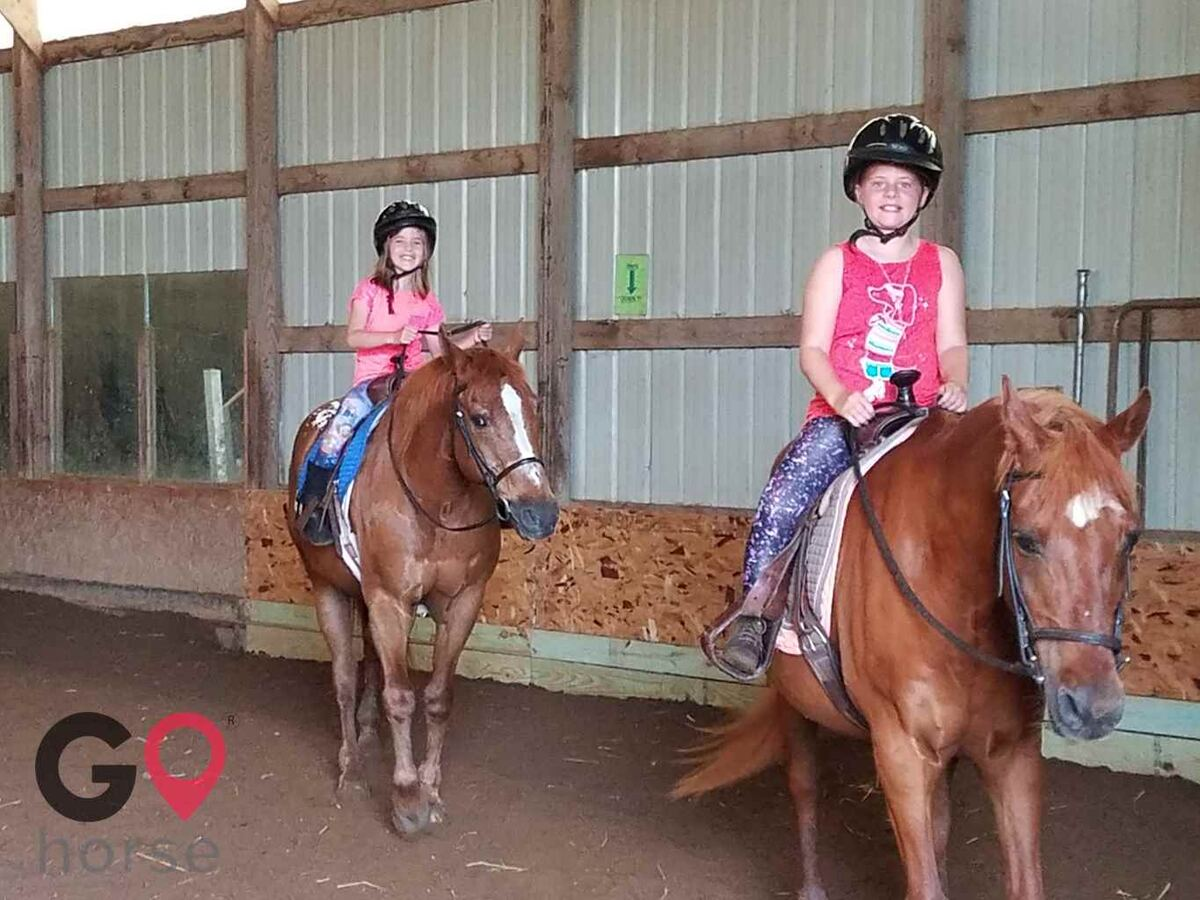 Turn Crest Stable Horse stables in Kasson MN 2