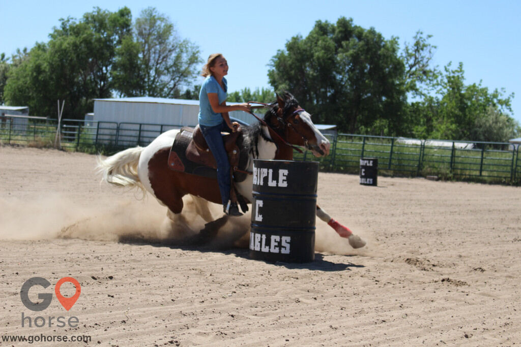 Triple C Stables Horse stables in Fort Lupton CO 15