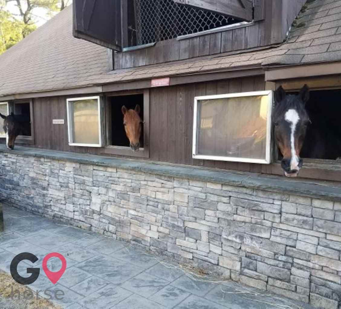 Tucker-Brook farm Horse stables in Milford CT 3