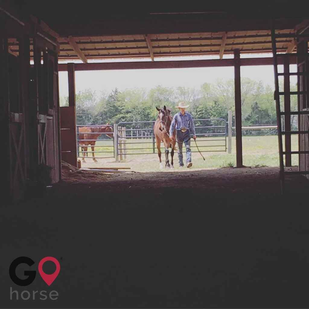 Rocking M Ranch Horse stables in New Hope AL 5
