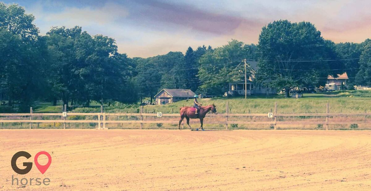 New Generation Equestrian Services Horse stables in North Attleborough MA 3
