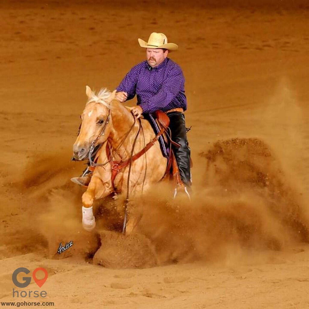 Chuck Nesmith Training Horse stables in Fort Lupton CO 3