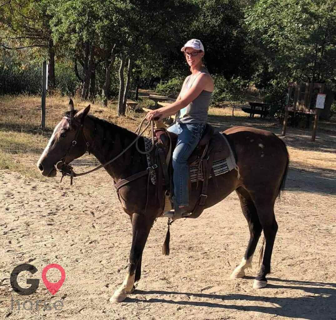 Standridge Horse Training Horse stables in Mountain Ranch CA 5