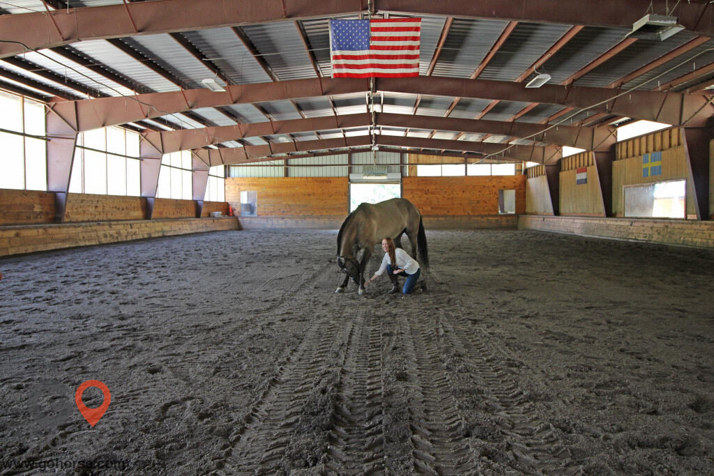 Settlement Farm Horse stables in Townsend MA 4