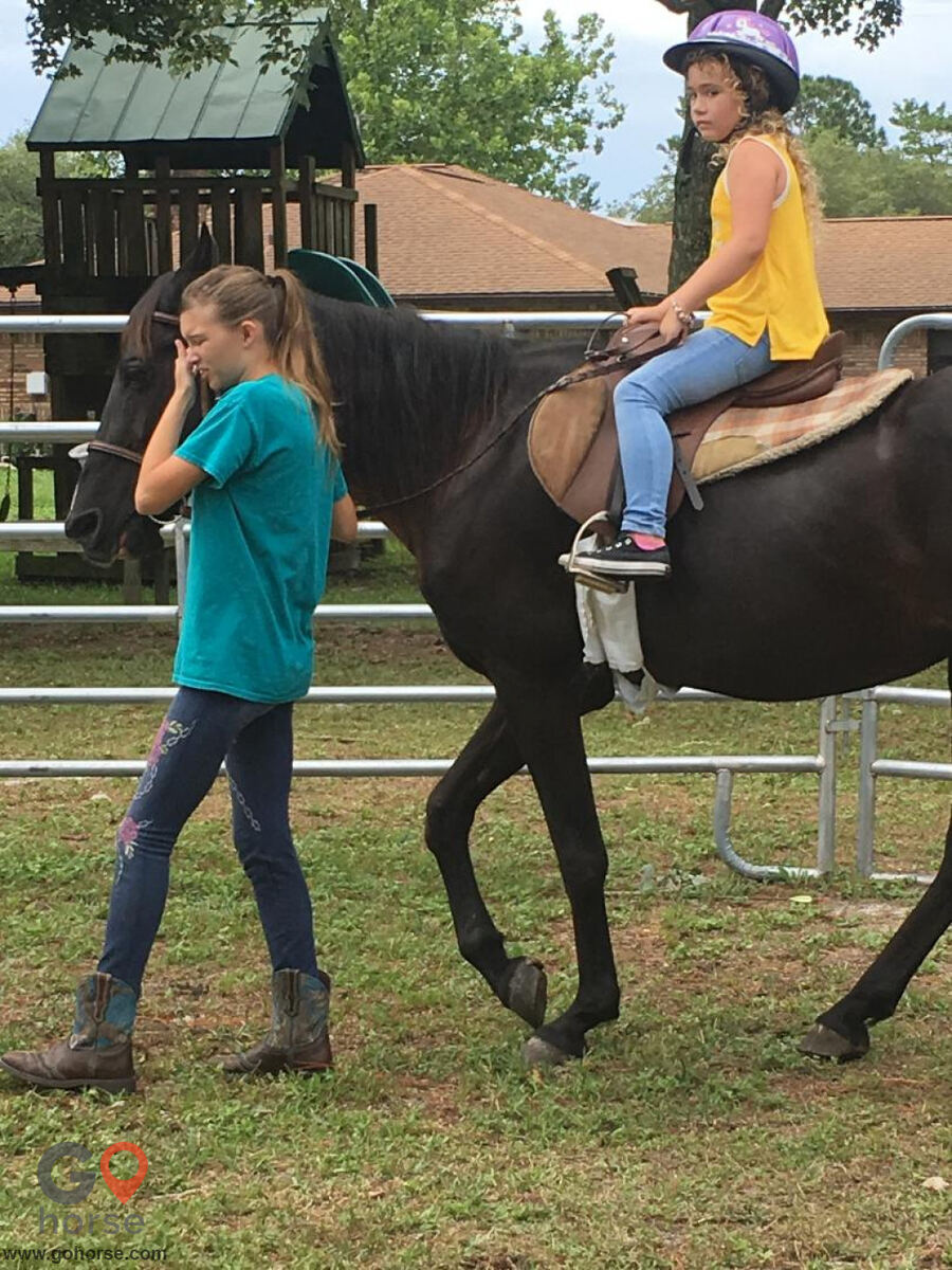 South Mountain Girls Ranch Horse stables in New Smyrna Beach FL 3