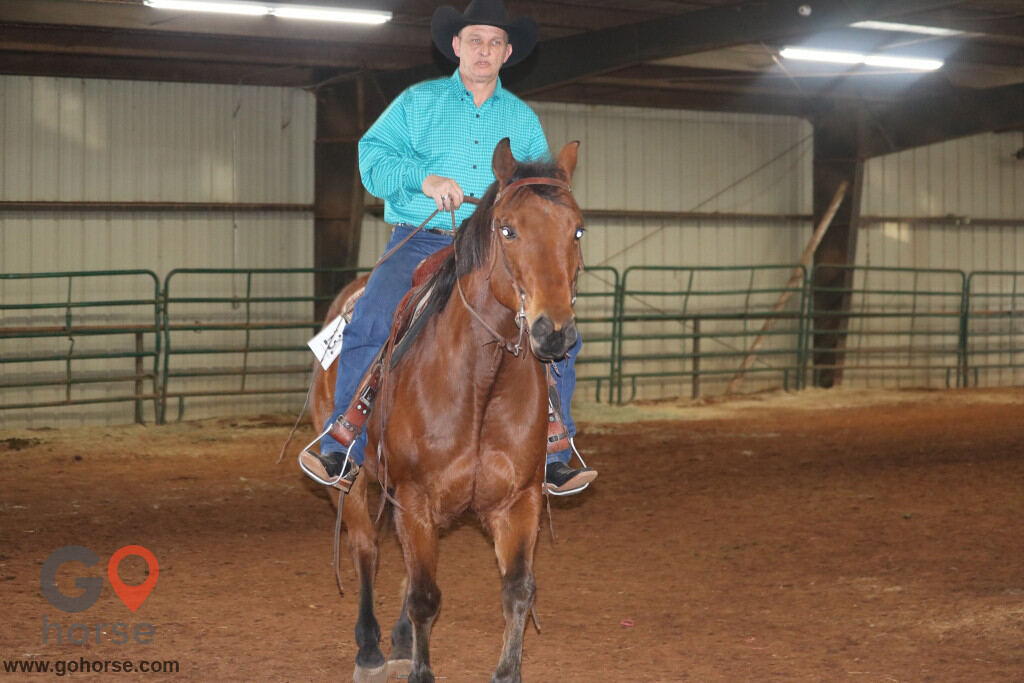 S&B Training and Riding Stables Horse stables in Paoli OK 3