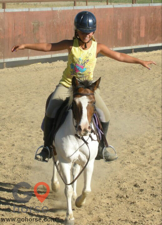 Circle T Ranch Horse stables in Lemoore CA 4