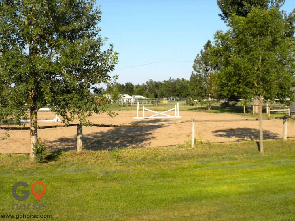 Four Winds Horse stables in Fort Collins CO 4