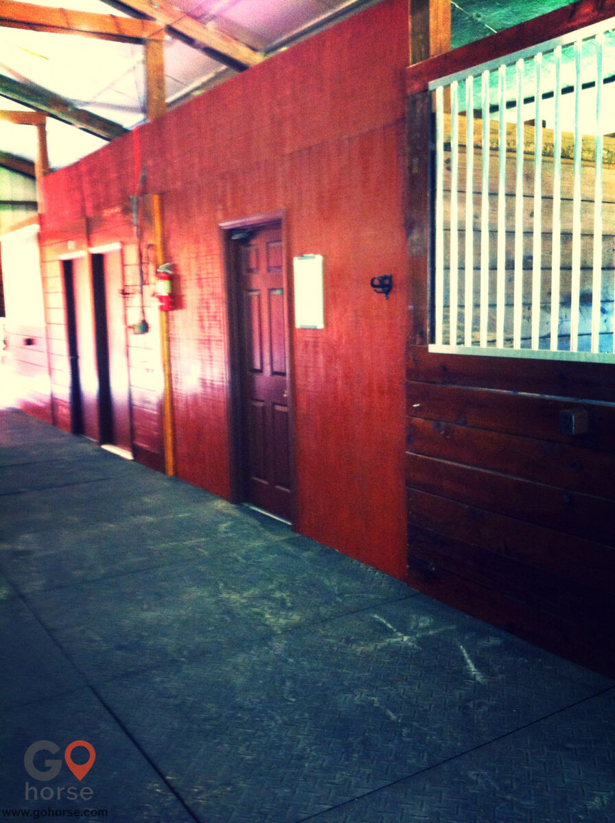 Halvorsrod Farm Horse stables in Wellington FL 6
