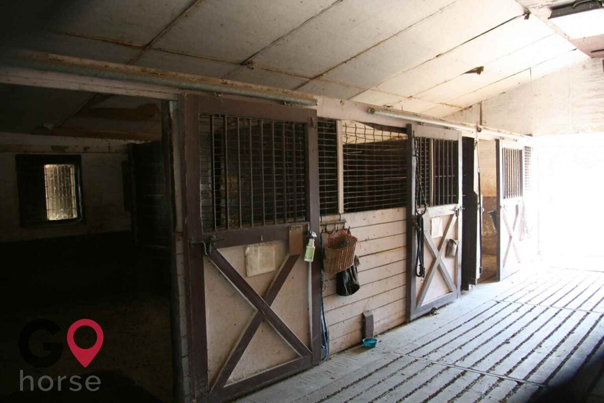 Meadowsweet Ranch Horse stables in Spring Grove IL 2