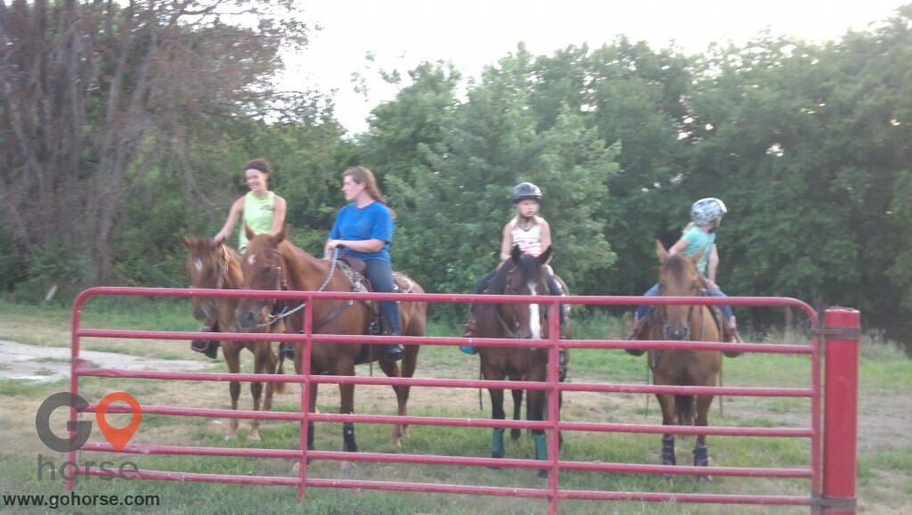 Circle C Ranch Horse stables in Council Bluffs IA 17