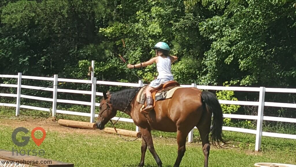 LauraLeigh Farms Horse stables in Dallas GA 2