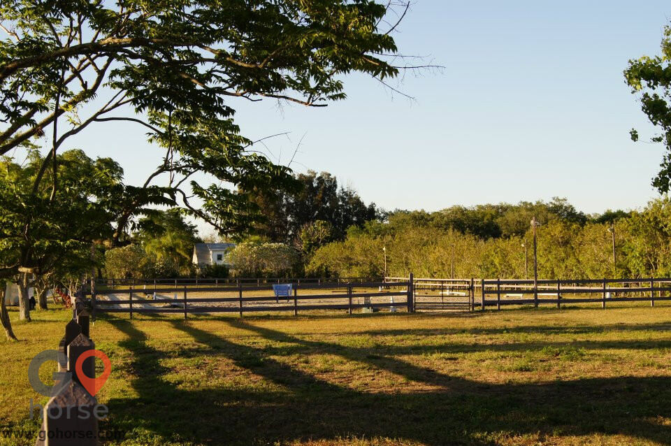 Top Equine Pro/ V Oaks Stable Horse stables in Merritt Island FL 7