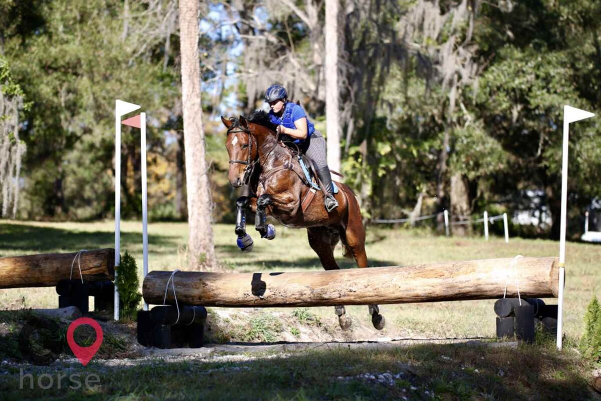 Wolf Song Acres Horse stables in Dunnellon FL 3