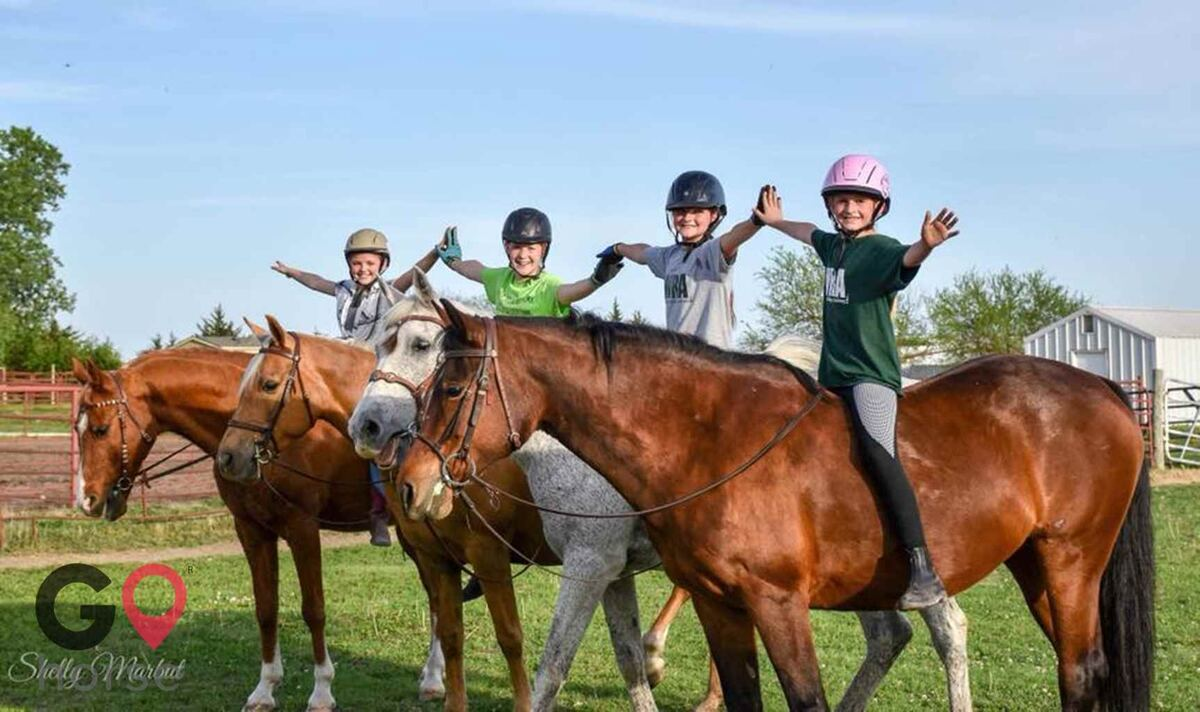 Wichita Riding Academy, Inc. Horse stables in Derby KS 8