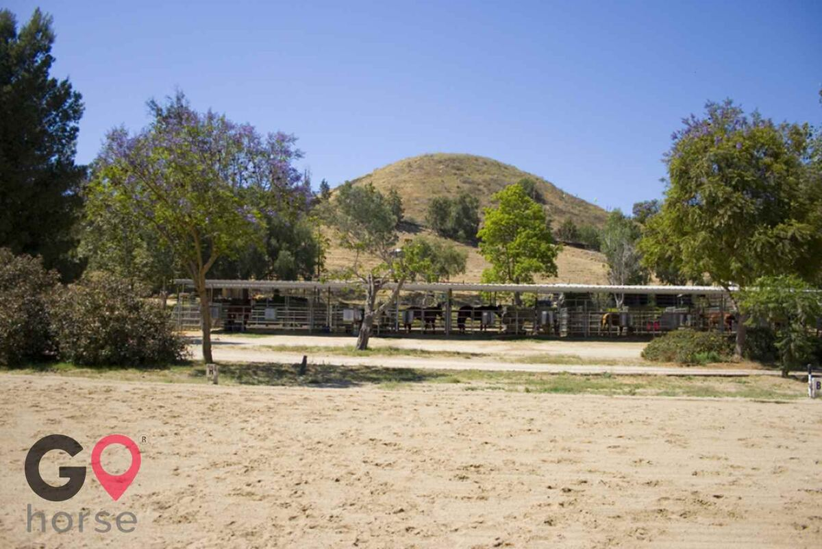 Blue Rose Equestrian @ Onden River Ranch Horse stables in Moorpark CA 10