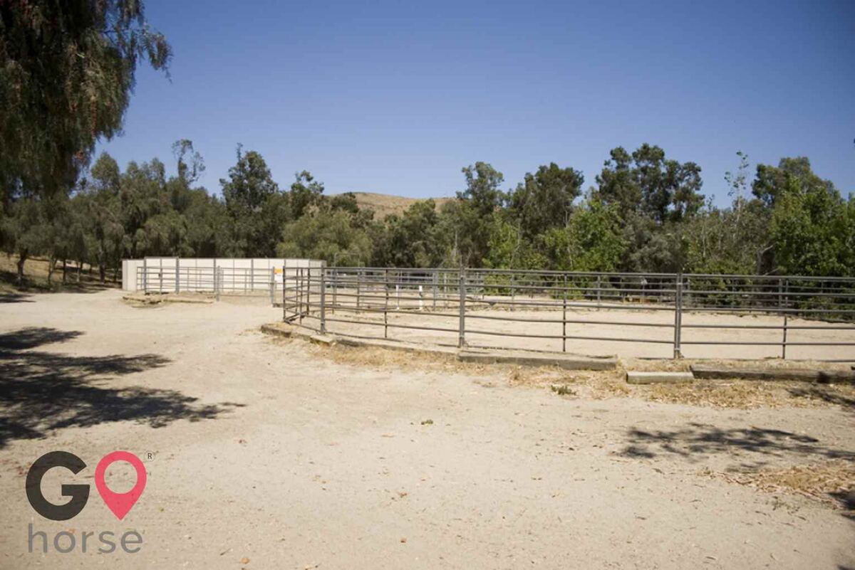 Blue Rose Equestrian @ Onden River Ranch Horse stables in Moorpark CA 6