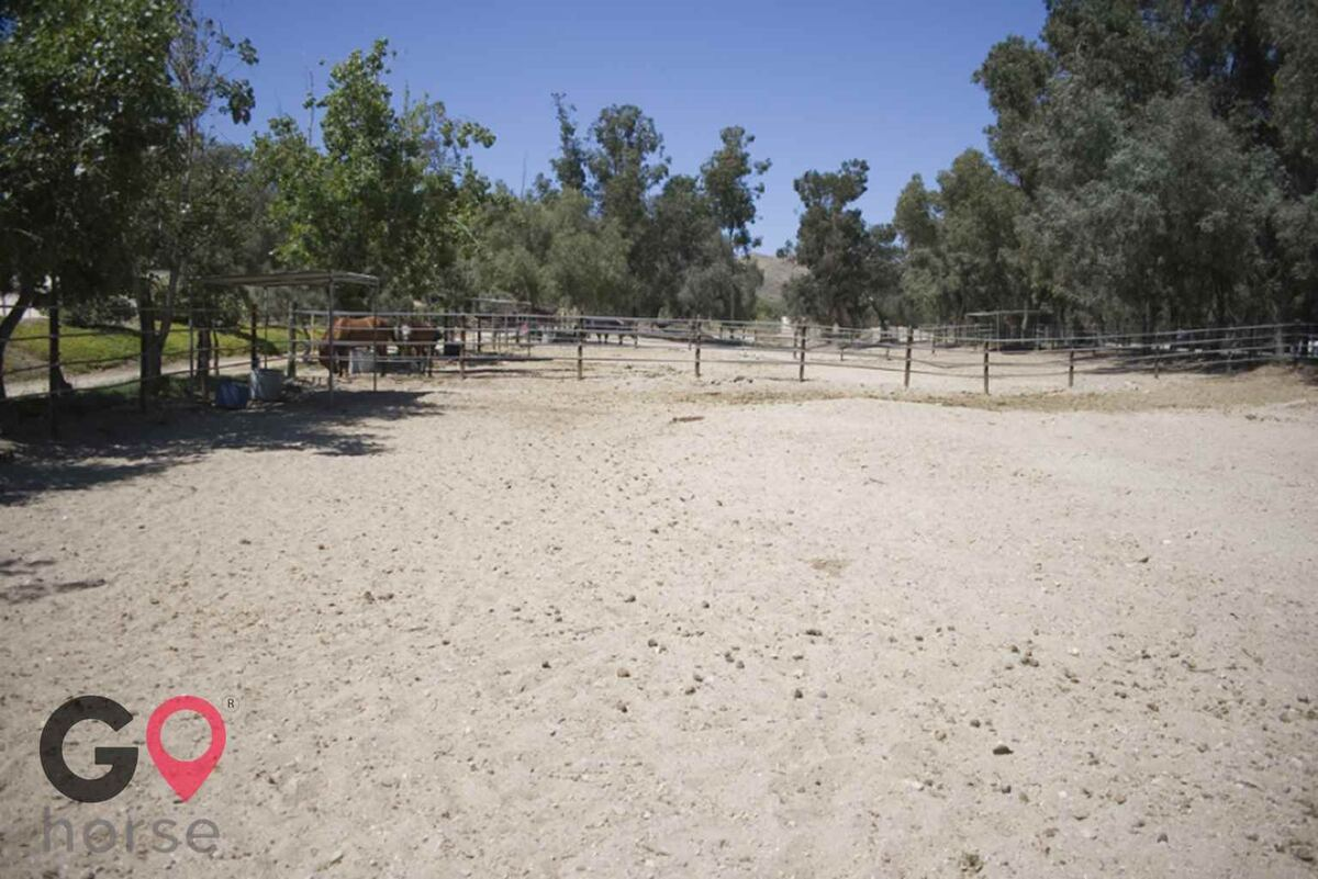 Blue Rose Equestrian @ Onden River Ranch Horse stables in Moorpark CA 16