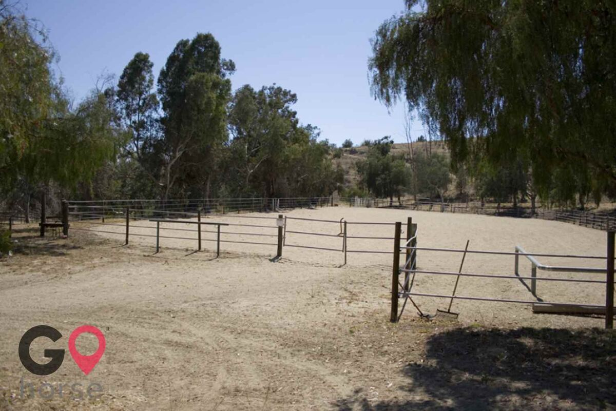 Blue Rose Equestrian @ Onden River Ranch Horse stables in Moorpark CA 7