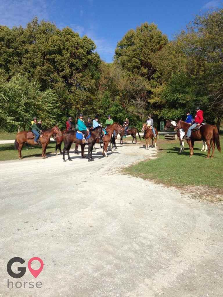 White Brook Farm Horse stables in Zionsville IN 2
