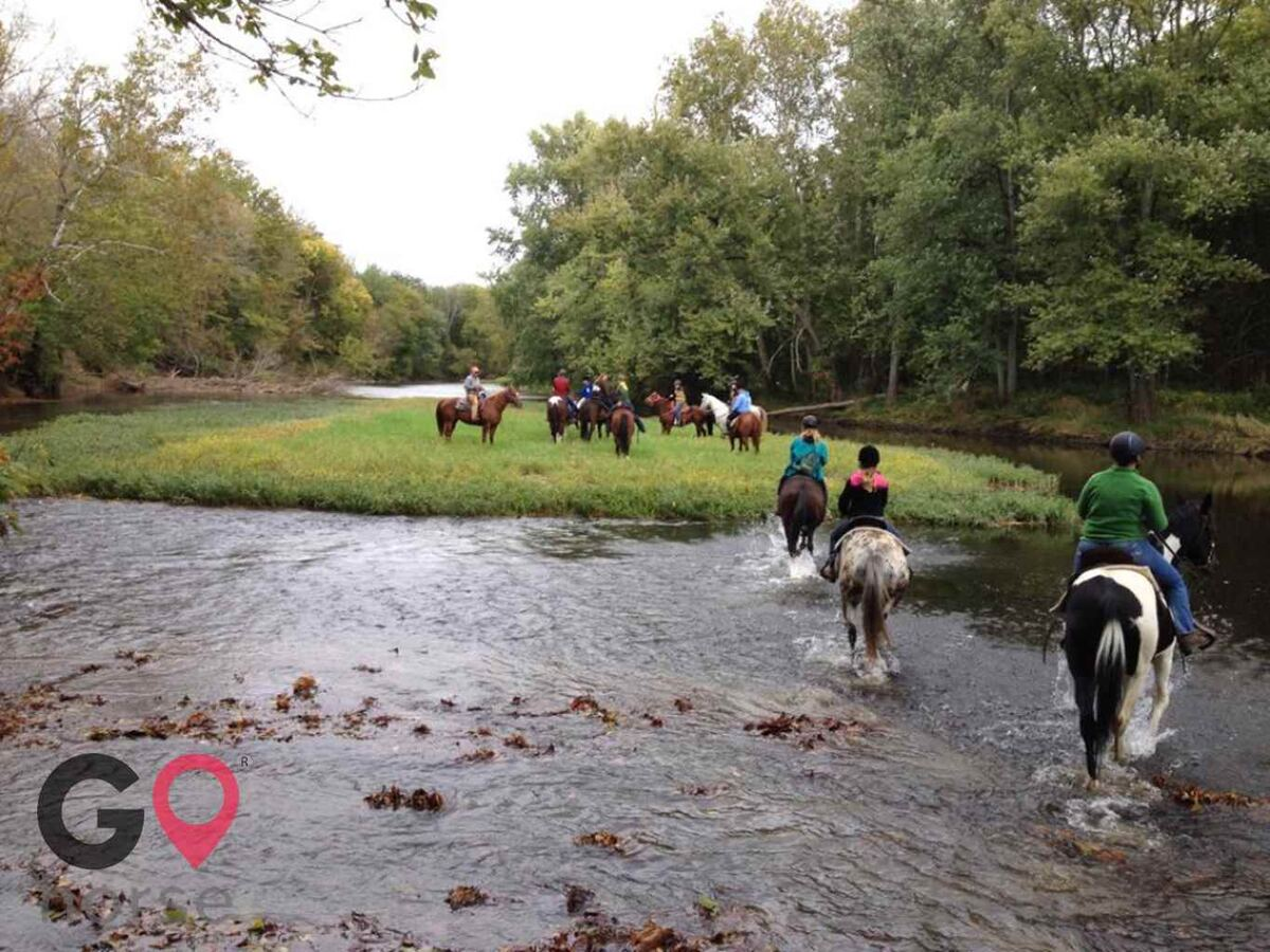 White Brook Farm Horse stables in Zionsville IN 3