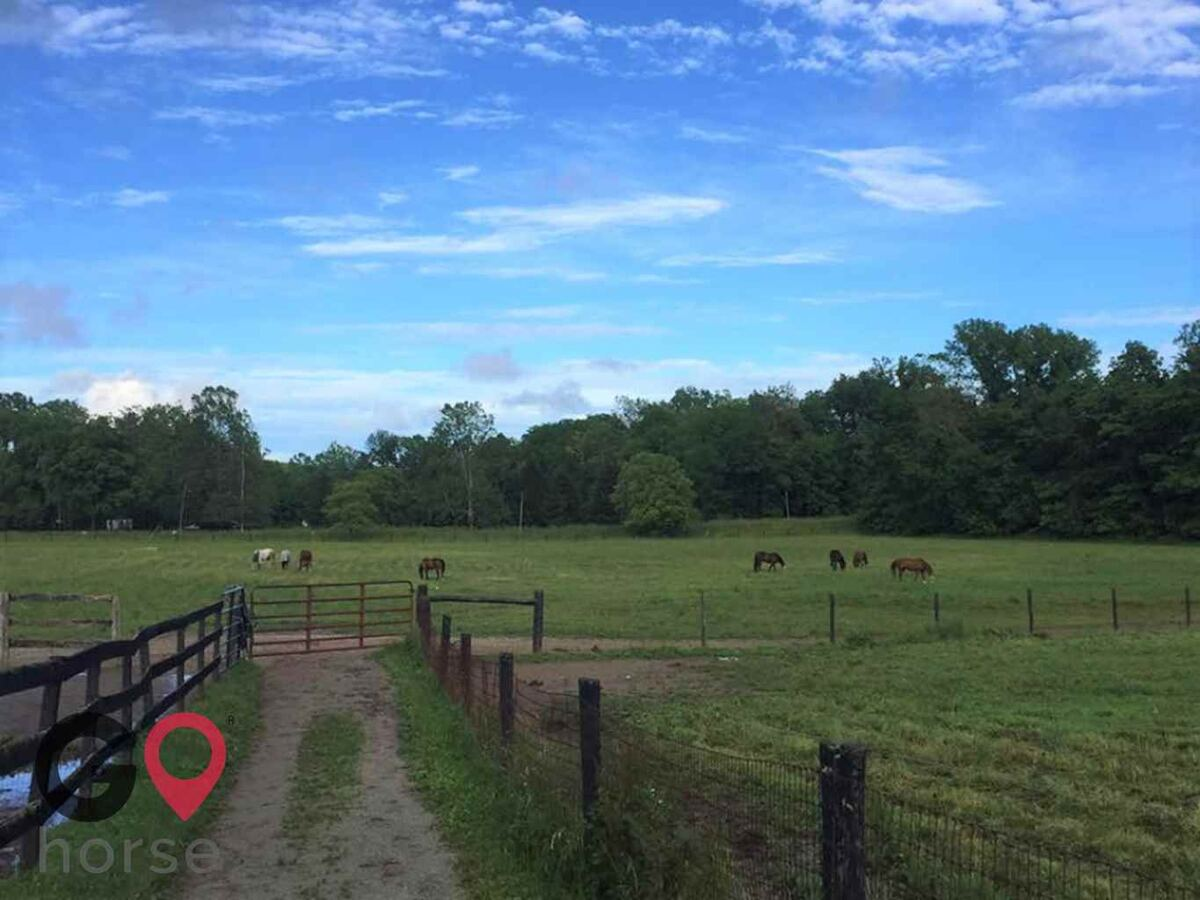 White Brook Farm Horse stables in Zionsville IN 6