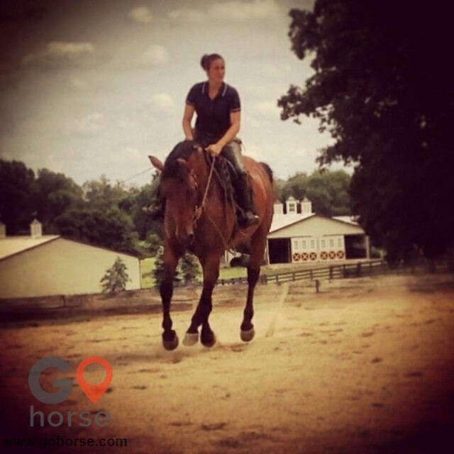 Pear Tree Ranch Horse stables in Citra FL 23