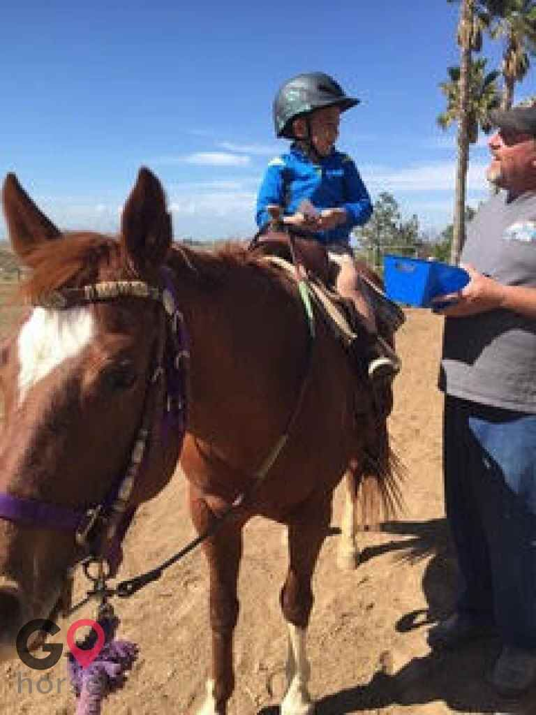 Trinity Therapeutic Riding Center Horse stables in Perris CA 5