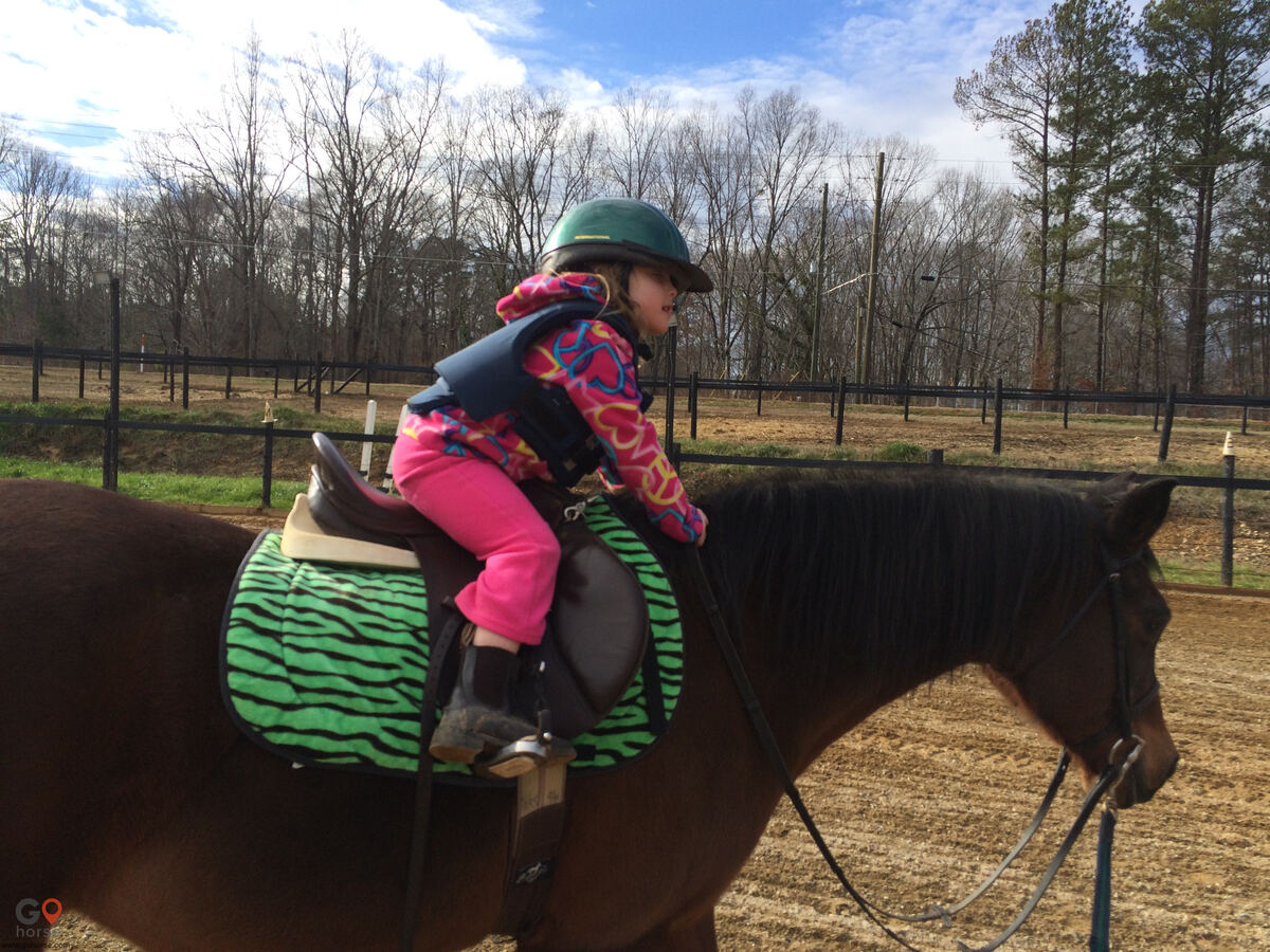 Pony Tail Acres Horse stables in Powder Springs GA 5