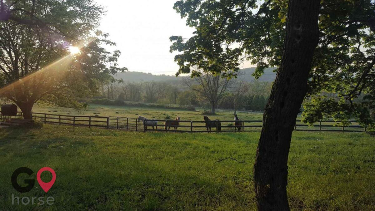Mountain Pine Haven Horse stables in Myersville MD 2