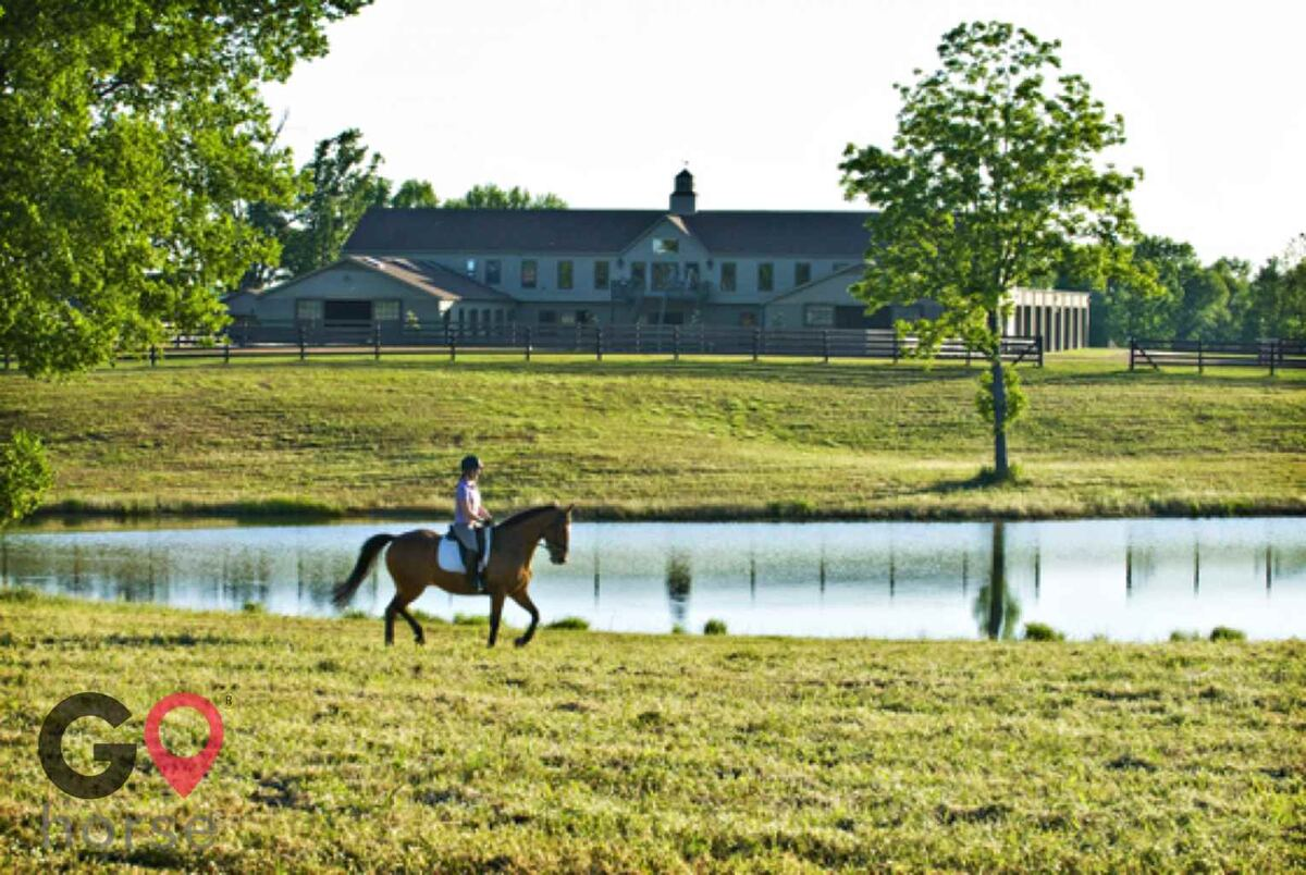Mid-South Dressage Academy Horse stables in Hernando MS 1