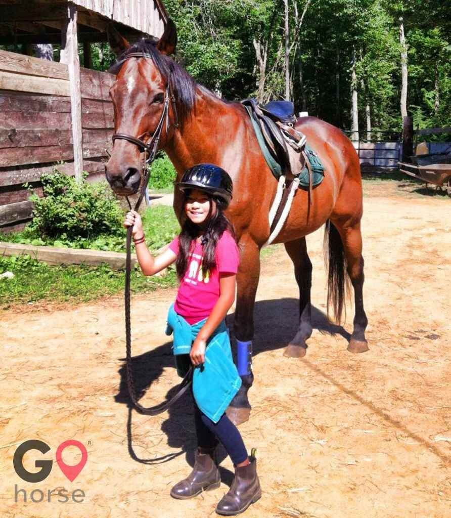 Camp Marshall Horse stables in Spencer MA 2