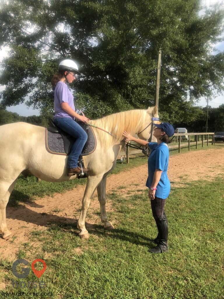 Amazing Gaits Equestrian Center Horse stables in Theodore AL 12