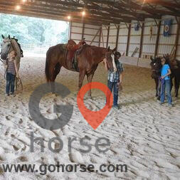 Twisted Clover LLC Horse stables in Elkport IA 5