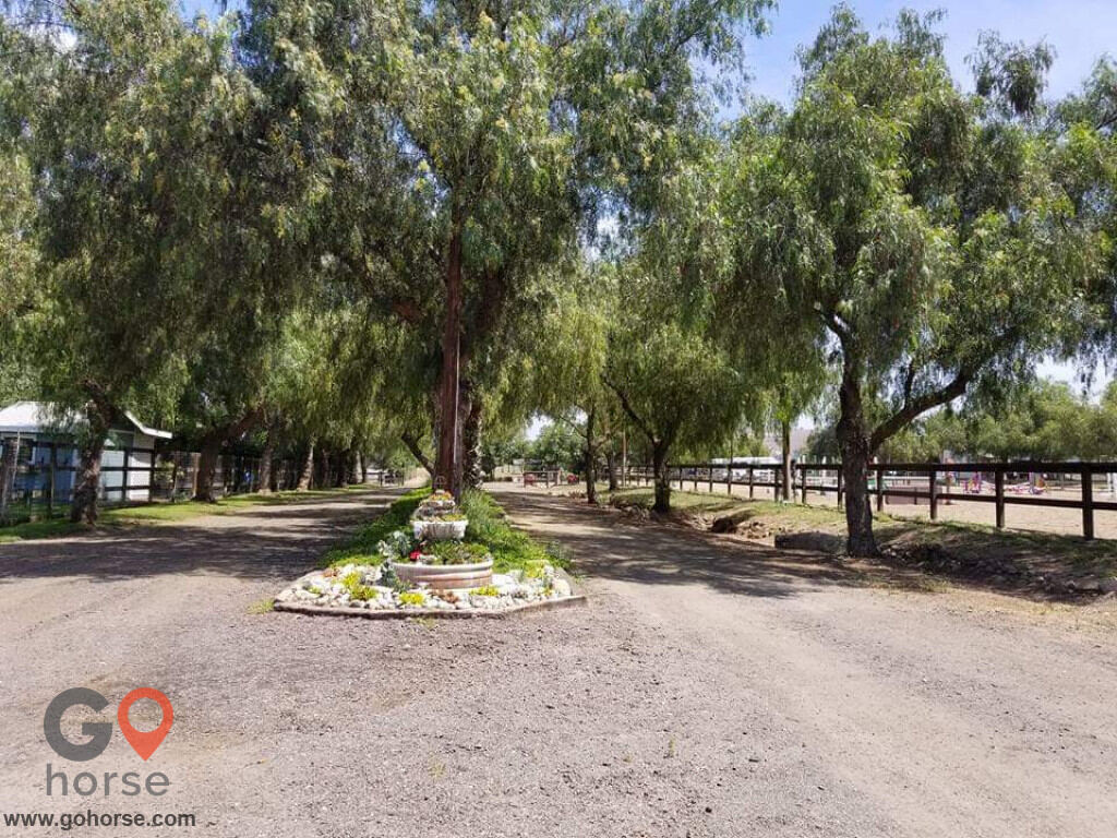 Pepper Creek Equine Center Horse stables in Ramona CA 2