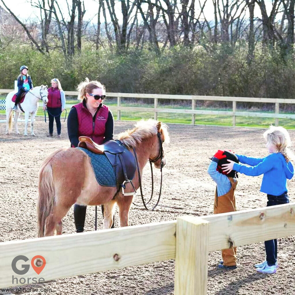 Highland Manor Farm Horse stables in Columbia TN 2