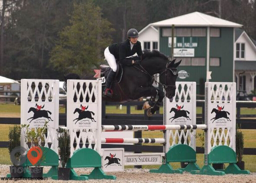 Hunters Glen Equestrian Center Horse stables in Alpharetta GA 17