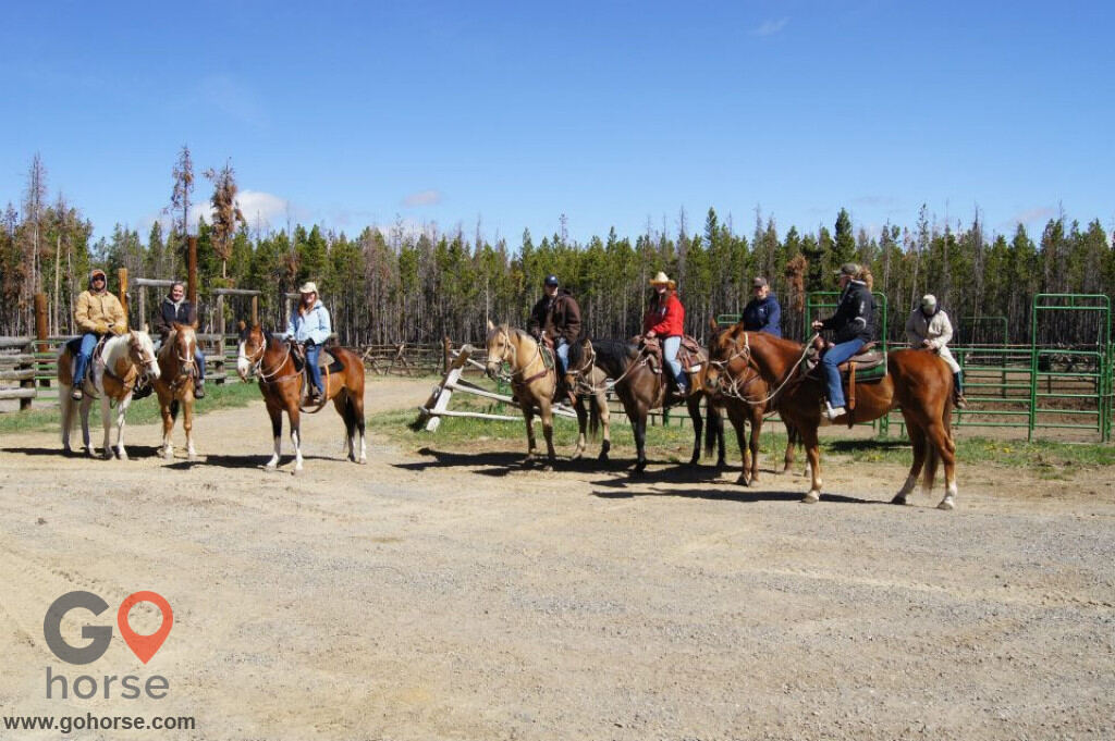 crooked creek guest ranch Horse stables in Dubois WY 2