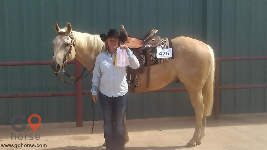 S&B Training and Riding Stables Horse stables in Paoli OK 2